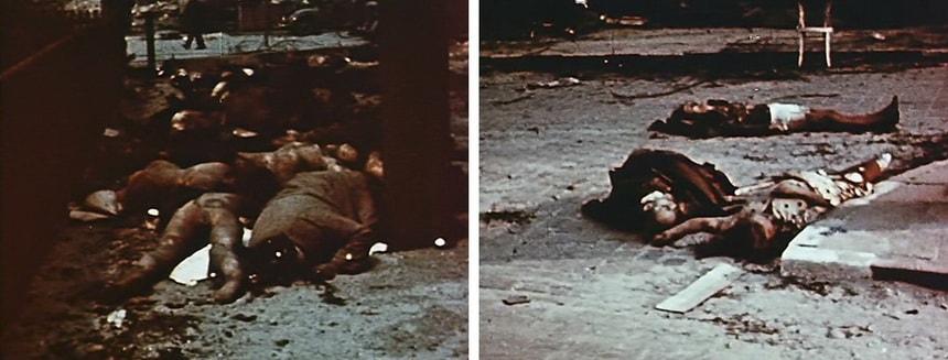 Жертвы бомбардировок Гамбурга в цвете