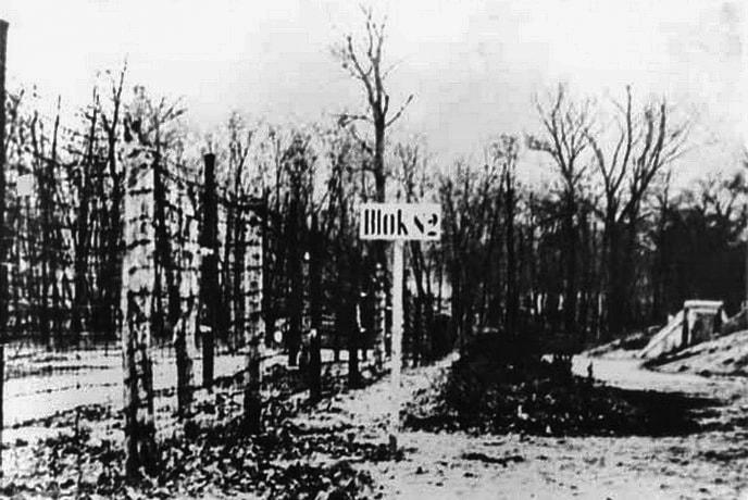 Заграждение из колючей проволоки по периметру Сырецкого концлагеря