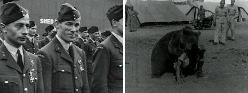 «Свободная Польша» / The Free Polish Forces