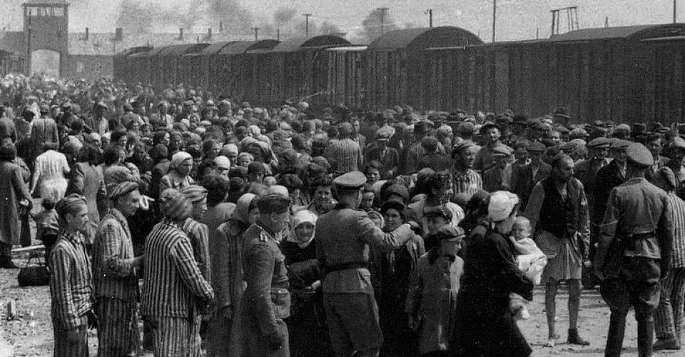 Уничтожение венгерских евреев. Я пережила Освенцим