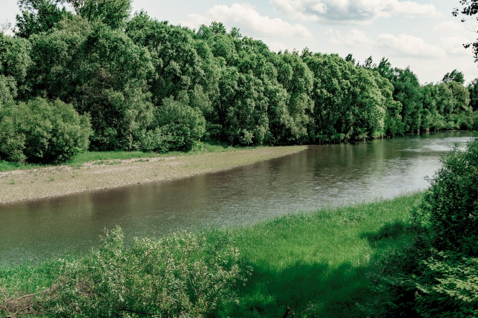 Sola river bank next to the Auschwitz camp