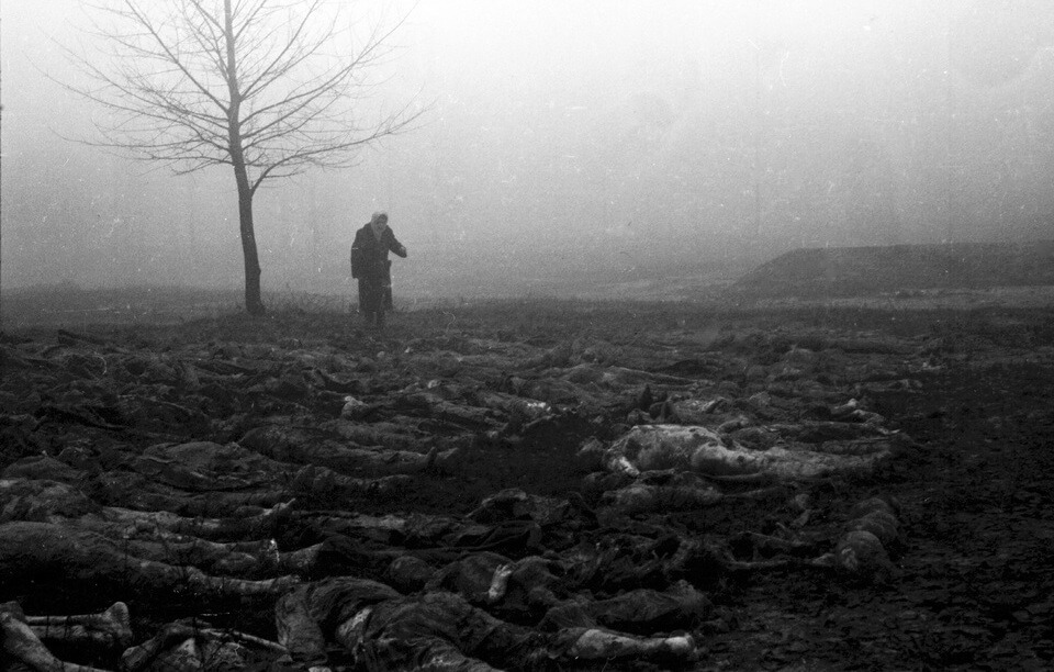 The mass graves in Kyiv, 1943